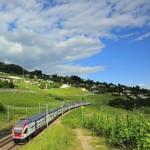 Il modo più semplice per organizzare viaggi in treno all'estero